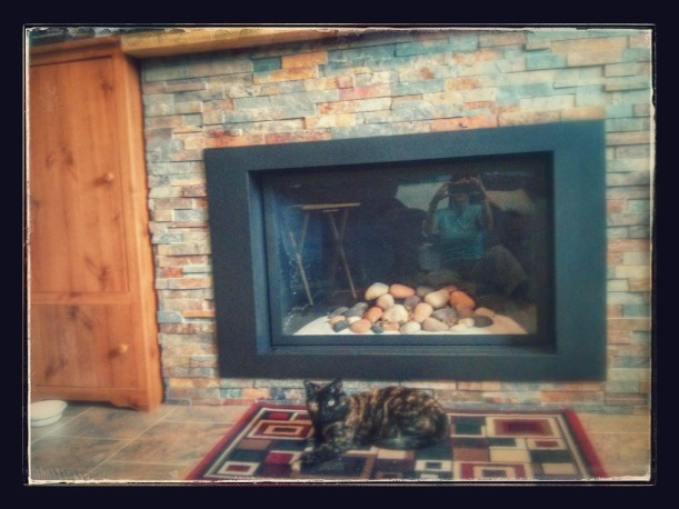 Zoe the cat and fireplace