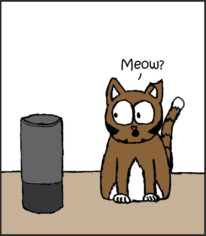 Cat meows at Alexa speaker